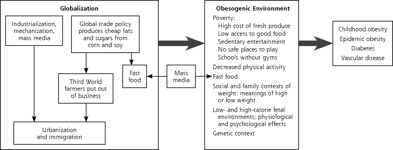 Obesity And Diabetes In Vulnerable Populations Reflection On Proximal And Distal Causes Annals Of Family Medicine